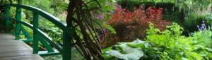 cropped-DSC03313-comp.jpg